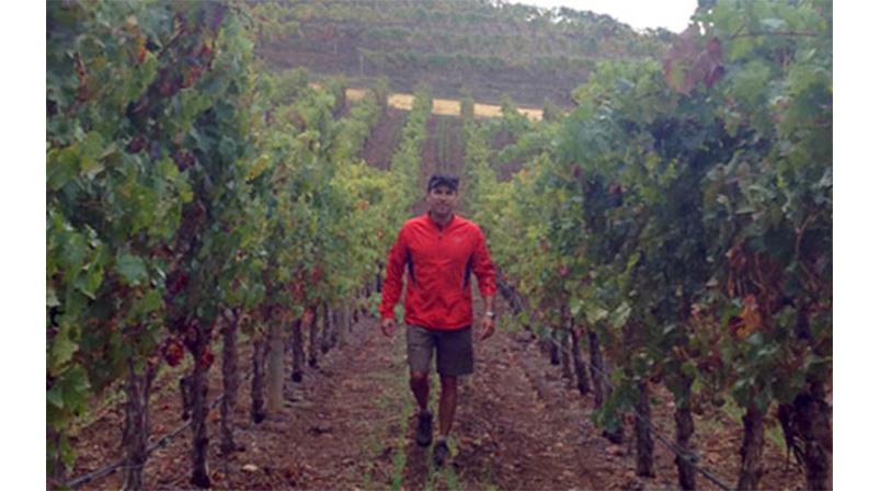 Zindandelic Winemaker