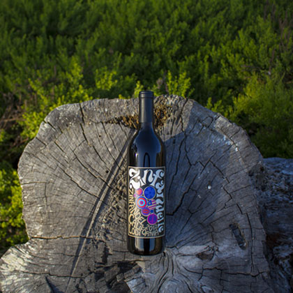 Zindandelic Lodi Zinfandel on stump